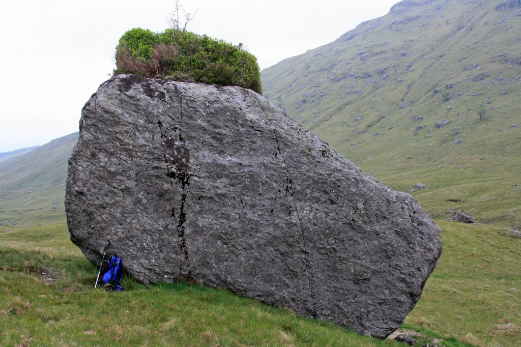 vegetated boulder in Coire Earb
