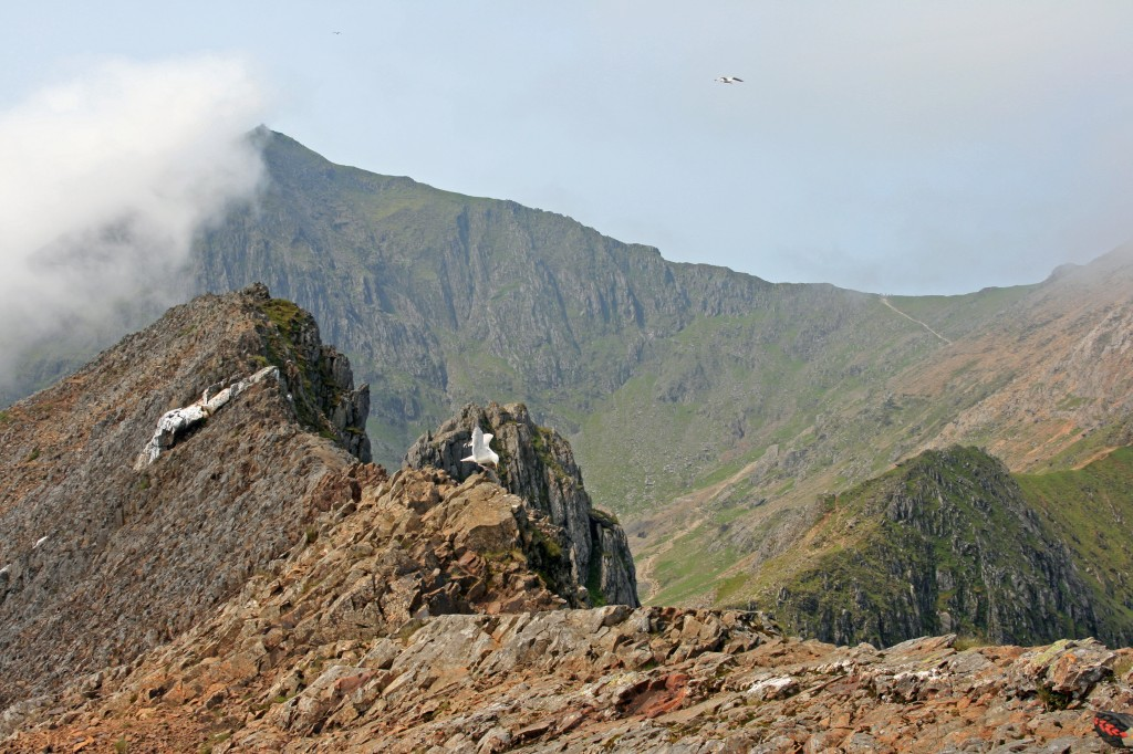 along the initial knife-edge ridge from summit of Crib Goch