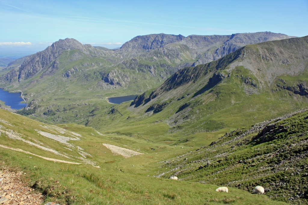 view towards Tryfan and the Glyders from Y Llymllwyd